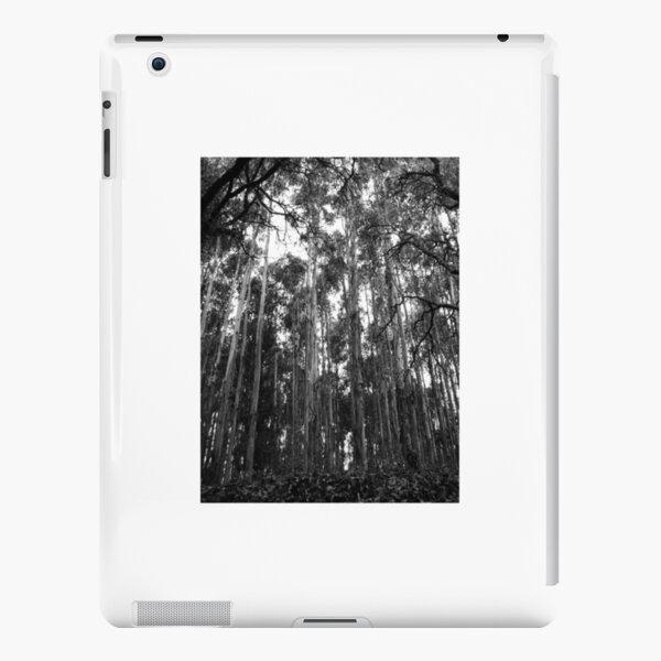 Untitled iPad Snap Case