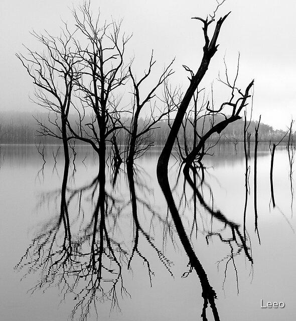 ~ Mirror Image II ~ by Leeo