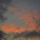 Painting with Sky in Los Angeles by Laurie Allee