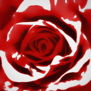 Painted Red Rose by nlittle