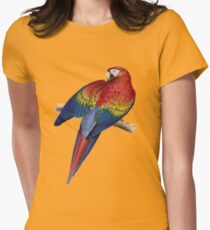 Illustration of A Scarlet Macaw Vector Women's Fitted T-Shirt