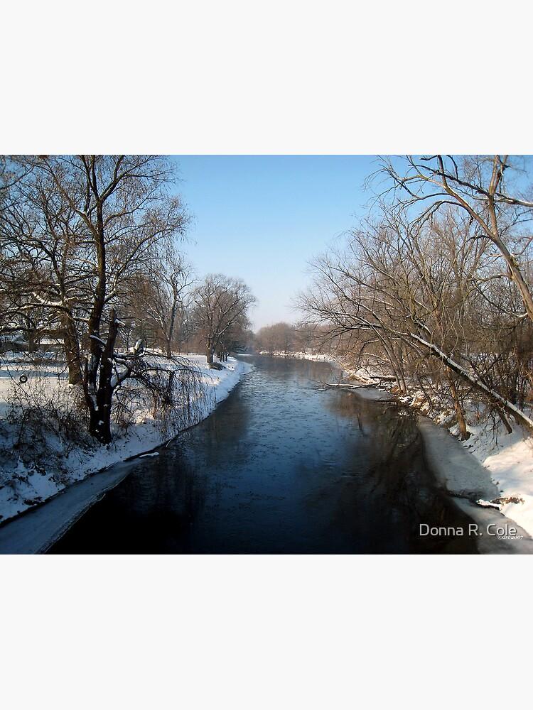 A Snowy Turtle Creek by alwaysdrc