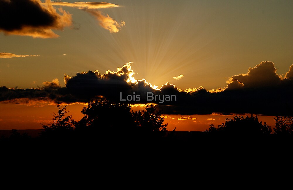Sunset by Lois  Bryan