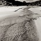 Tyler's Creek, Osmiridium Beach 1 by Andrew Smyth