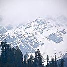 Mountains of Manali by Sunil Bhardwaj