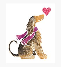 Watercolour Afghan Hound Photographic Print