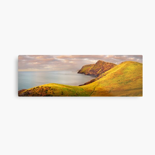 Golden Glow, Second Valley, Fleurieu Peninsula, South Australia Metal Print