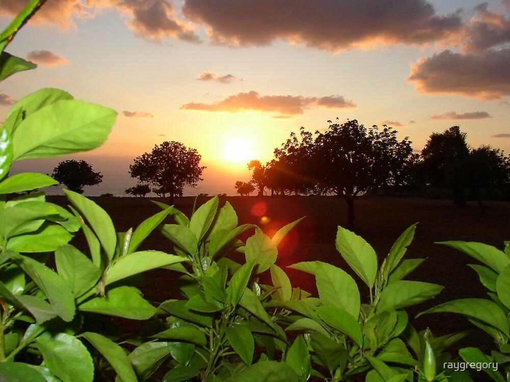 Peyia Sunset - Cyprus by raygregory
