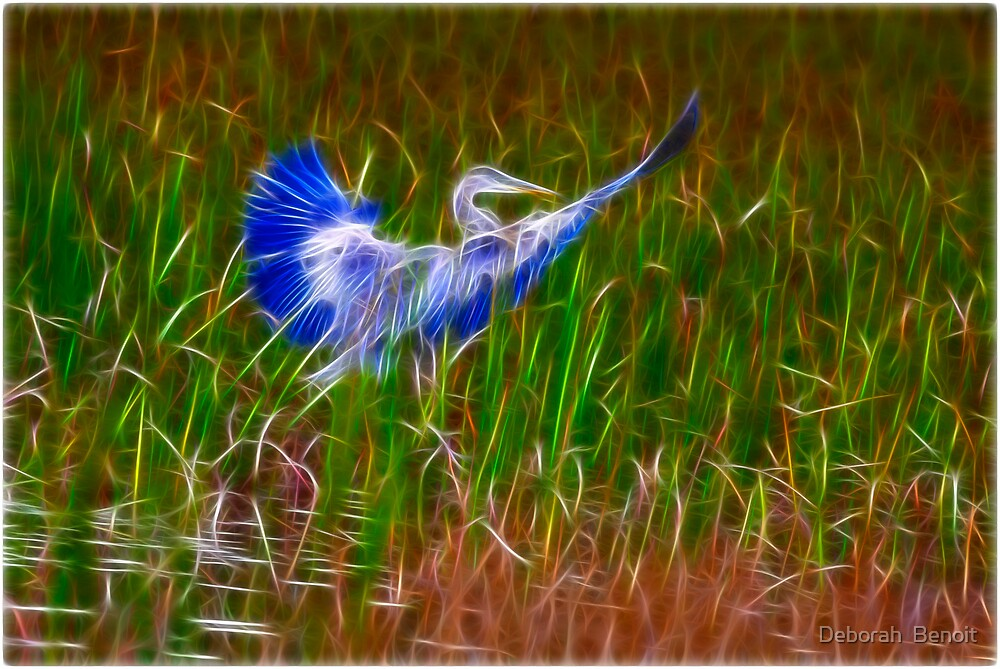 Soft landing In Frac by Deborah  Benoit
