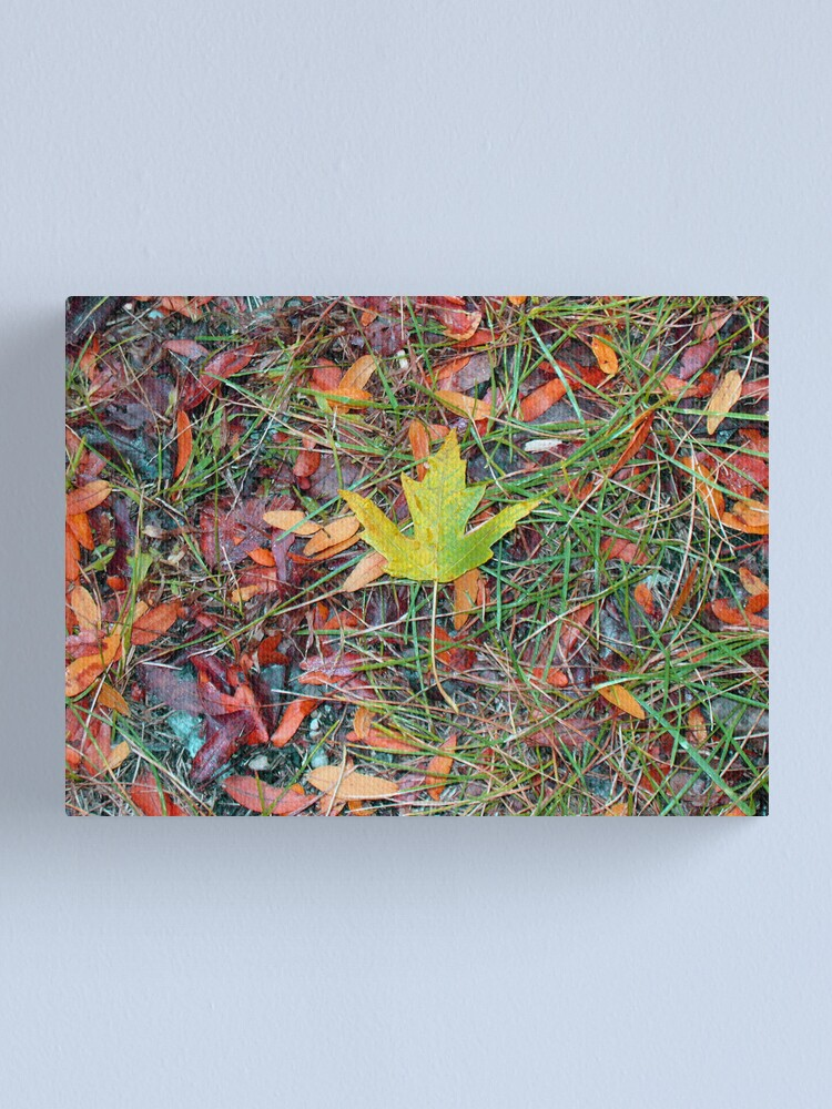 Alternate view of Fall is Coming Canvas Print