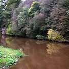 River Almond by Kevin Meldrum