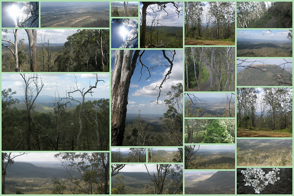 Toowoomba Collage by Melissa Park