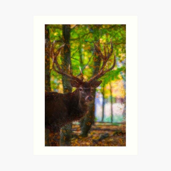 The deer stag by Brian Vegas Art Print