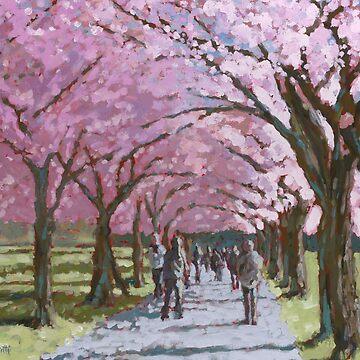 Edinburgh Meadows (Spring Blossom) Scotland by TraceyPacitti