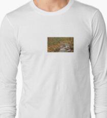 DeSoto Falls – scenic hikes along Frogtown Creek T-Shirt