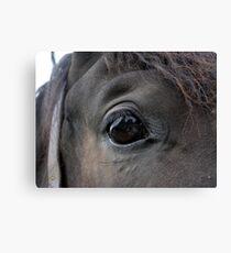 Self Portrait in a Horse's Eye Canvas Print