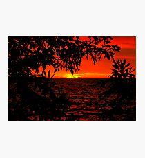 RED DAWN...... A Tribute to YELLOW JACKET..... Photographic Print