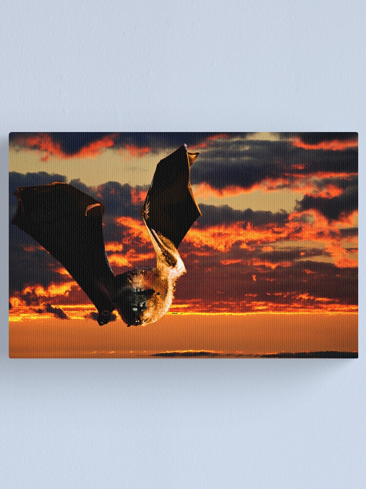 Alternate view of Vampire Canvas Print