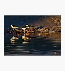 Stilts Photographic Print