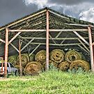 Hay Barn by Patricia Montgomery