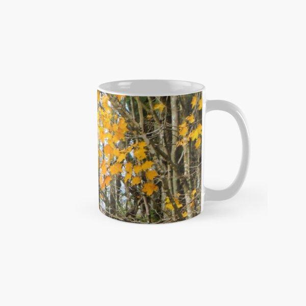Autumn woods Classic Mug
