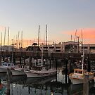 Pier 39 marina in San Francisco....... by DonnaMoore