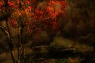 Fall Arrives by Jeff Burgess