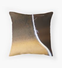 Quietened by the Silence Throw Pillow
