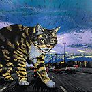 Central Expressway Cat by Una Scott