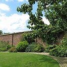 Der ummauerte Garten - Verlorene Gärten von Heligan von BlueMoonRose
