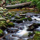 ~ Groom River II ~ by Leeo