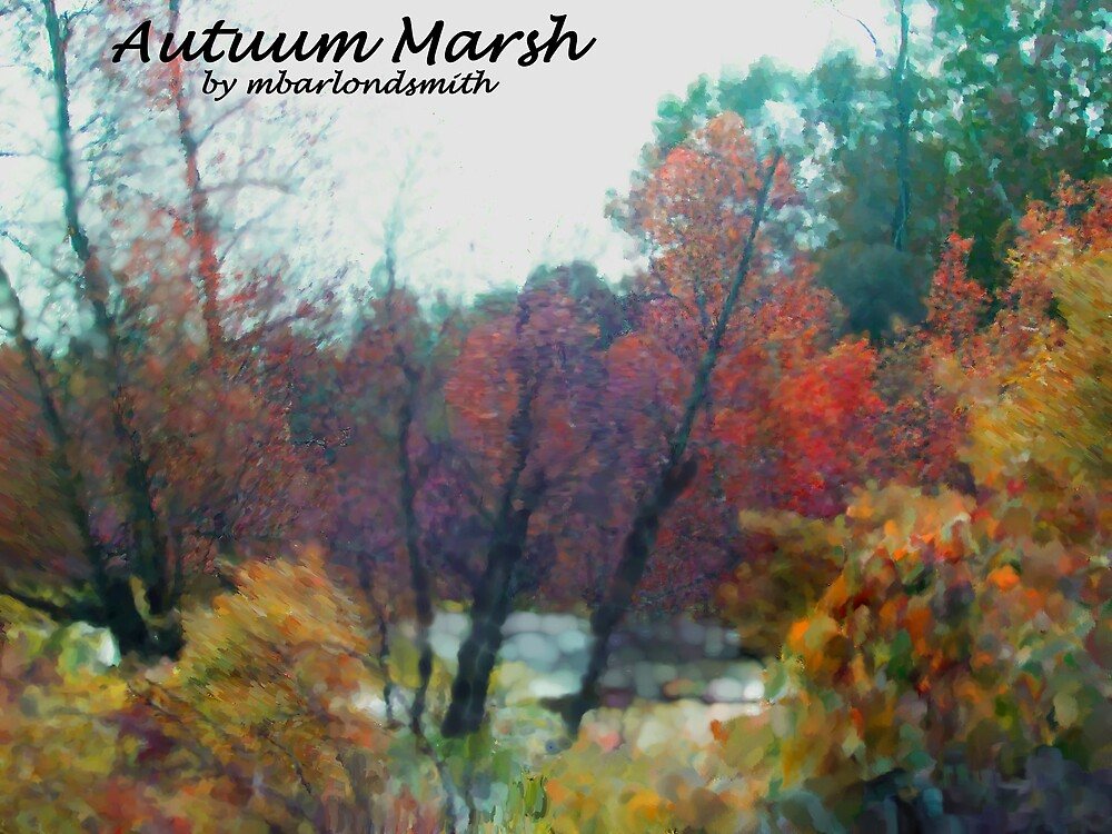 Autuum Marsh  by Michelle BarlondSmith