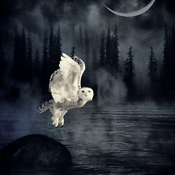 The owl and her mystical moon by locustgirl
