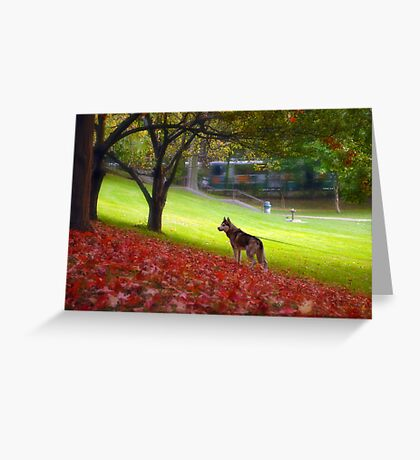 Just another fall day Greeting Card
