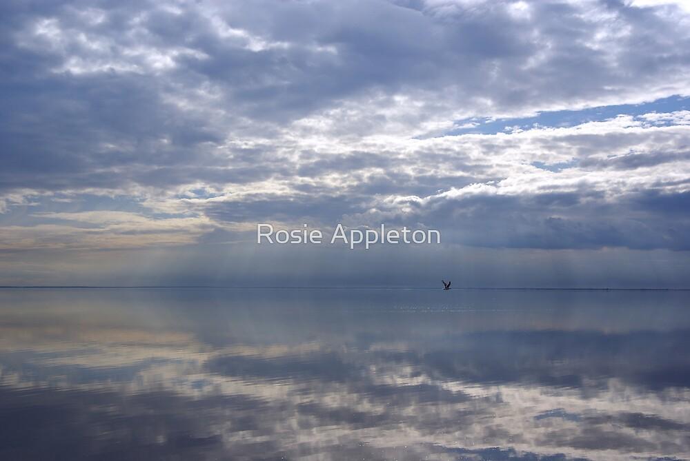 Reflections by Rosie Appleton