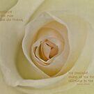 Inspirational rose by inkedsandra