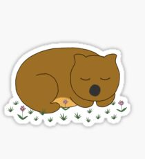 Wombat Dreaming Sticker