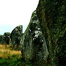 The stones in Carnac by mindfulmimi