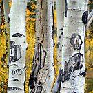 Treesome by samos