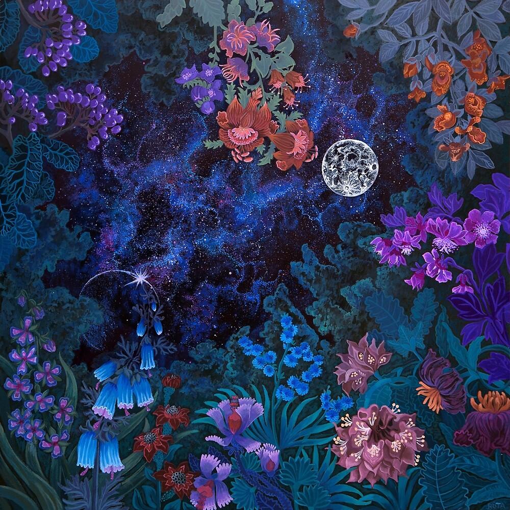 Night Space Magic Garden by Ruta Dumalakaite