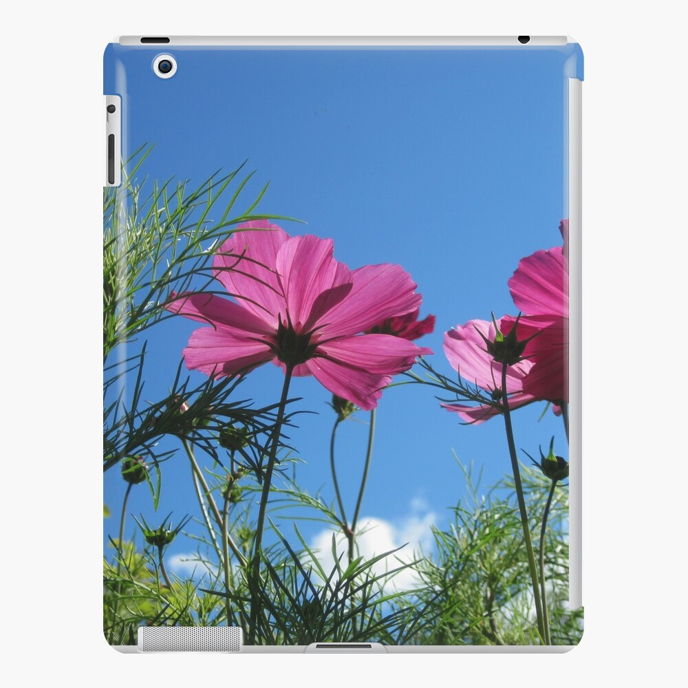 Hoch schauen iPad-Hülle & Skin