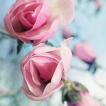 Laura Ashley Inspired Springtime Magnolias on Blue Sky by LisaKnechtel