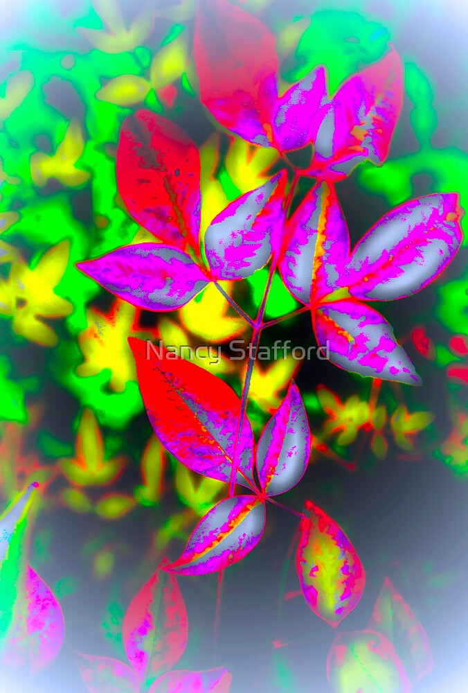 Leaves of Fall by Nancy Stafford
