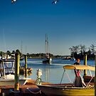 Coming into the Harbor by TJ Baccari Photography