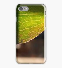 Leaf in translucency I iPhone Case/Skin