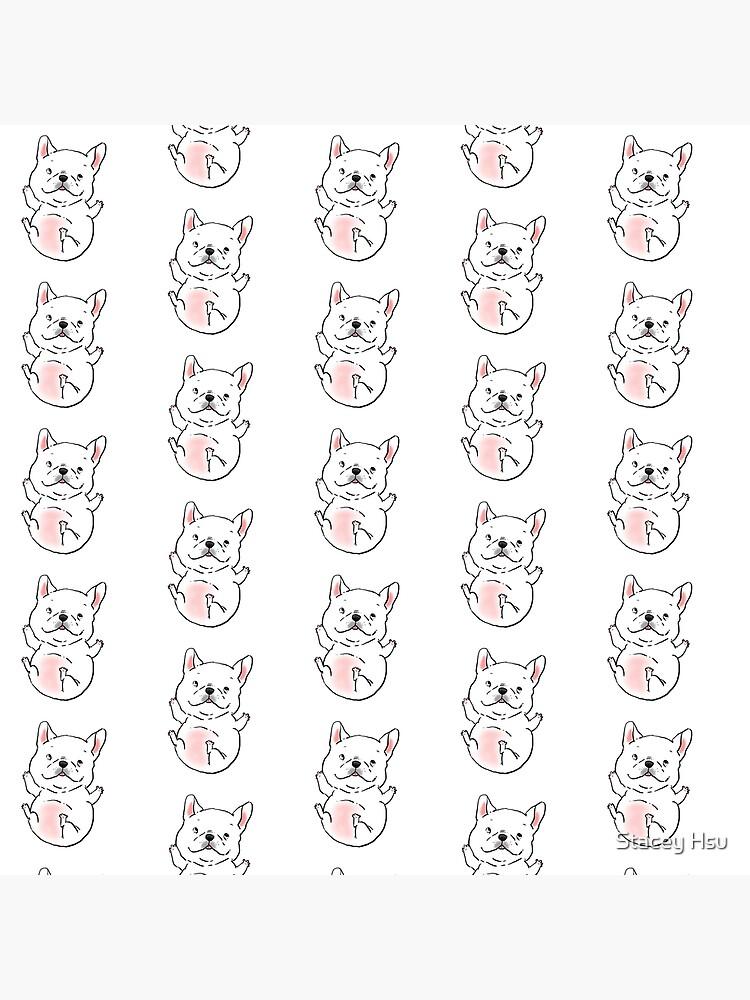 Cute Chubby French Bull Dog Frenchie Puppy by nitesky13