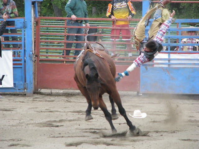 Saddle Bronc by lilestduncan