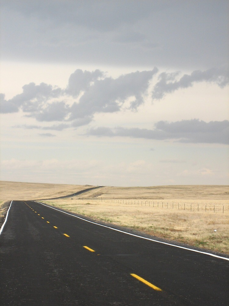 Road in New Mexico  by jojobob