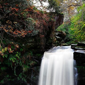 Thomason Foss, Goathland, North Yorkshire by PaulBradley