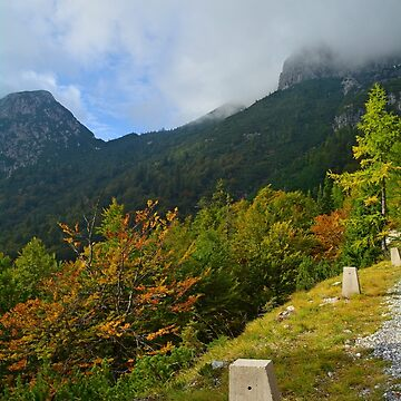 Autumn on the Slopes of Mangrt  by jojobob